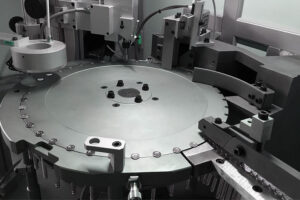 Dimac 100% inspection and sorting machines make quality fly high